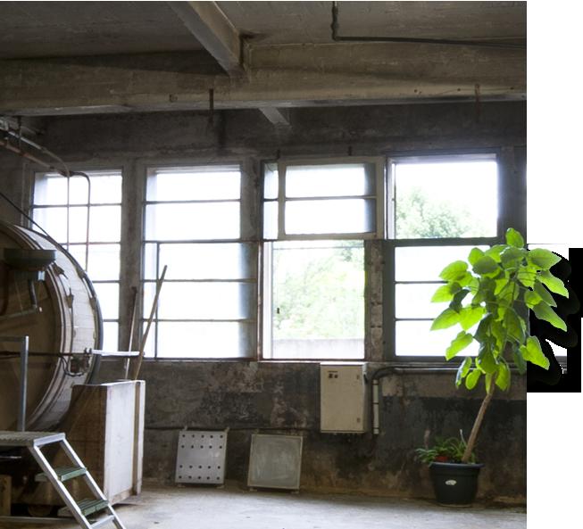 Tannerie Alric locaux entreprise artisan millau